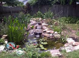 Small Backyard Pond Ideas Garden Design Garden Design With Koi Pond Backyard Pond Uamp