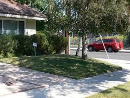 Alternative To Grass In Backyard by Pro Portfolio Lawn Swap For Low Water Landscape In Sherman Oaks