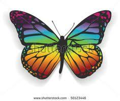yellow butterfly isolated butterfly of yellow color on a
