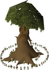 spirit tree ring school runescape wiki fandom