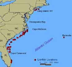 map usa oceans mapofatlanticocean6jpg 800589 pixels my country tis of where is