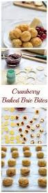 Christmas Appetizers Easy by 150 Best Images About Appetizers On Pinterest Cream Cheeses
