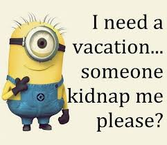 minions comedy movie wallpapers 51 best minions funny images on pinterest minions quotes