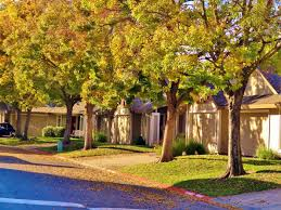 3 Bedroom Apartments In Sacramento by Income Restricted Apartments In Sacramento Bellwood Park