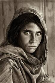 great pencil artists photos pencil drawing stills drawings gallery