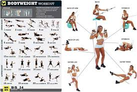 home work out plans 12 week no gym home workout plan