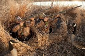 Mallards Duck Blind How To Build A Duck Blind Diy Guide And Expert S Advice