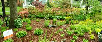 certified green landscaping companies my green montgomery
