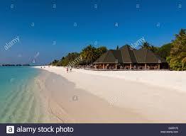 bungalows on paradise island or lankanfinolhu indian ocean stock