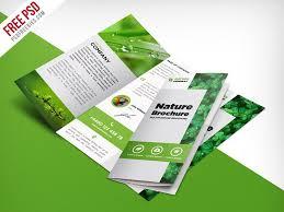 free three fold brochure template nature tri fold brochure template free psd psdfreebies