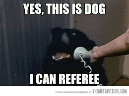 Dog On Phone Meme - prior to the 2012 nfl season the meta picture