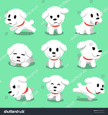 bichon frise funny cartoon character bichon frise dog poses stock vector 328937576