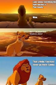 Pike Meme - look simba everything the light touches is pike county wow
