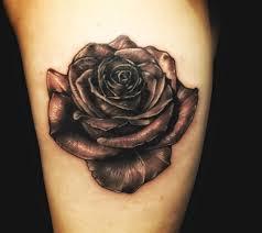 black rose u2013 taxidermia tattoo