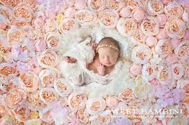 digital backdrops digital backdrop newborn photography layer styles creative market