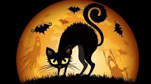 Halloween Witch Wallpaper Desktop Wallpapersafari by Halloween Wallpapers With Cats Wallpapersafari