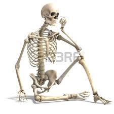 spooky skeleton png spooky kawaii skeletons