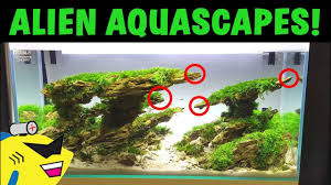 Aquascape Nj Alien Aquascape Amazing Planted Aquarium Aquascapes Youtube