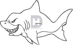 how to draw a shark step by step drawing guide by darkonator