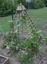 Trellis For Cucumbers In Pots Idea For A Cucumber Trellis Love Space Saving Garden Ideas I