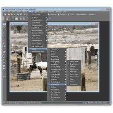 top 10 free paint shop pro plugins expand your digital photo