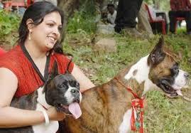 boxer dog shows 2016 dog show photos bangalore events navbharat times photodhamaal