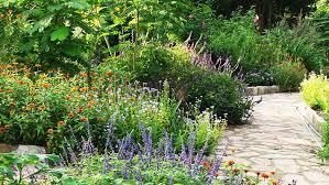 seven principles of xeriscape garden style san antonio