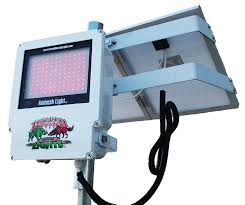 Red Solar Lights by Wicked Lights Ambush A1 Night Hunting Hog And Predator Red Led
