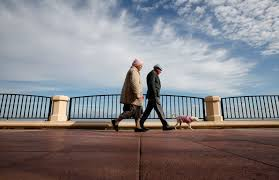Social Security Research Paper Retirement Pensions Social Security