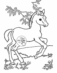 baby hippo coloring pages virtren com