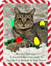 e cards for christmas donations