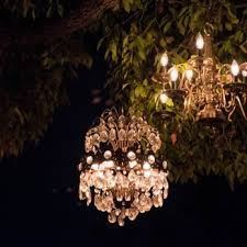 tree chandelier chandelier tree 529 photos 175 reviews 2811 w