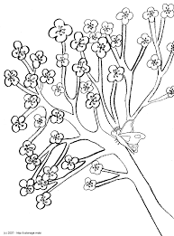 Coloriage  Papillon dans un pommier en fleurs