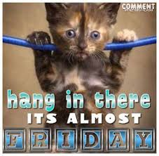 Almost Friday Meme - hang in there it s almost friday pictures photos and images for