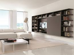 15 wall storage systems consider using in your residence