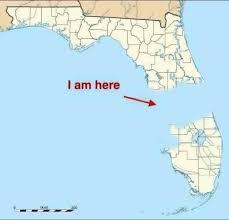 Florida Rain Meme - that the sun is shining again check out ta s best patio bars