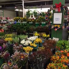 whole sale flowers riccardi wholesale flowers llc home