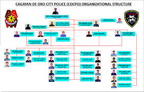 cocpo organizational structure