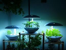 cara membuat cairan hidroponik panduan praktis cara menanam tanaman hidroponik just my hobby