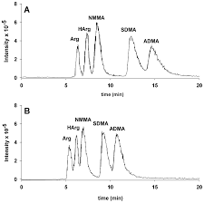 ijms free full text determination of homoarginine arginine