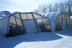 Backyard Greenhouse Winter Introduction To High Tunnels Extension