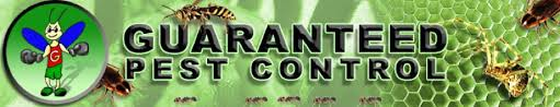 welcome guaranteed pest insects spiders ants