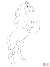 rearing horse coloring page free printable coloring pages