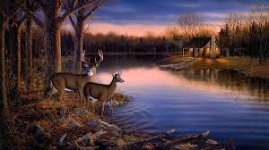 tranquil evening by sam timm art of sam timm pinterest we offer for sale a large selection of deer wall mural large wall murals and photo murals in all sizes plus tips on wall mural installation
