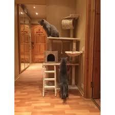 Cat Furniture by Aliexpress Com Buy Pawzroad Cat Furniture Cat Scratching Toy