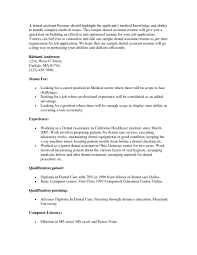 Resume Of It Director Resume Examples Of A Producer Security Financial Management Cv