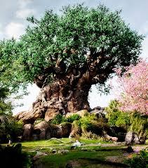 tree of kingdom orlando florida