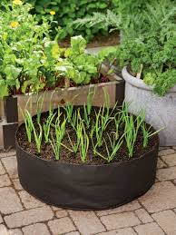 garden lovely container vegetable gardening container vegetable