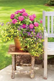 Outdoor Potted Plants Full Sun by Spectacular Container Gardening Ideas Southern Living