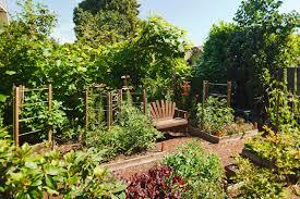 Garden Ideas For Backyard Backyard Vegetable Garden Ideas Best 25 Gardens On Pinterest